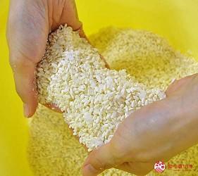 日本越光米的故鄉北陸「福井」的味噌店「米五 みそ楽」的味噌釀造工廠製作味噌第一步