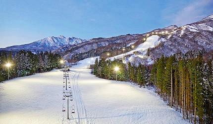 日本新潟「樂天新井度假村」(ロッテアライリゾート)的滑雪場