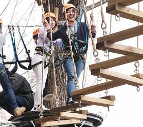 日本新潟「樂天新井度假村」(ロッテアライリゾート)的森林冒險設施