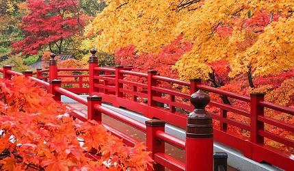 日本自由行新潟四日三夜行程中推介彌彥公園賞紅葉